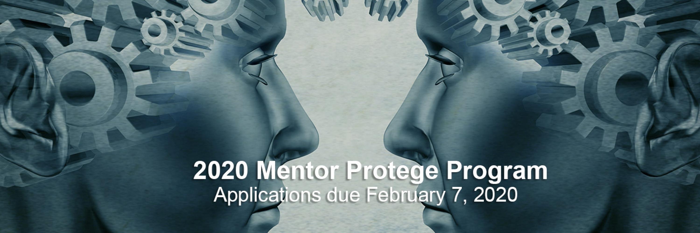 2020 Mentor Protege Program v4